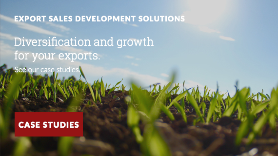 export sales development solutions